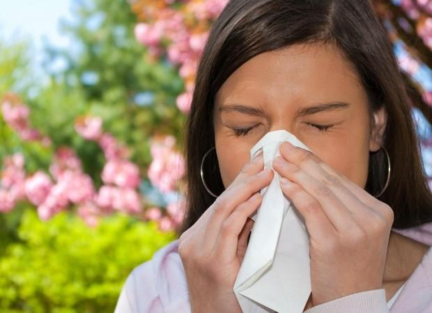 Este lunes 8 de julio, día mundial de la alergia