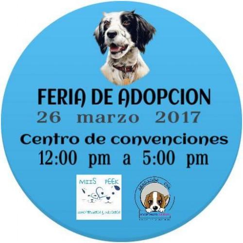Este fin de semana Ferias de Adopción Canina  y jornada de esterilización gratuita en Cointzio