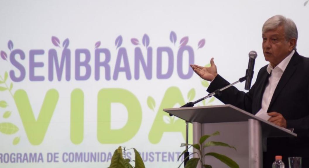 Presenta AMLO programa Sembrando Vida que reactivará el sureste mexicano