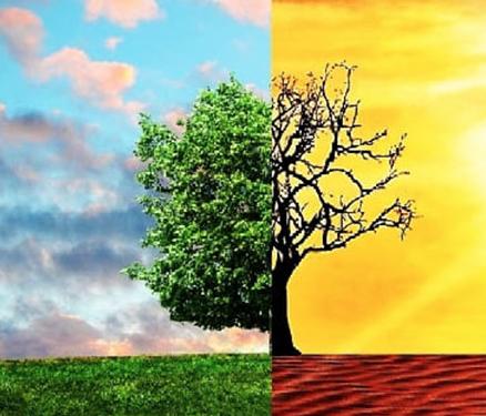 """Se necesitan medidas """"drásticas a gran escala"""" para frenar el calentamiento global"""