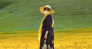 Una mujer en un campo de flores en Ardabil, Irán.